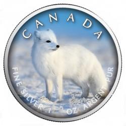 1 oz Maple Leaf Polar Fox -...