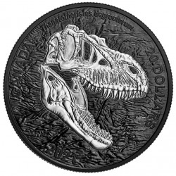 1 oz Discovering Dinosaurs:...