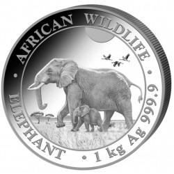 1 Kg African Wildlife...