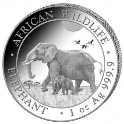 40 x 1 oz African Wildlife...