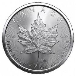 50 x 1 oz Maple Leaf 2021...